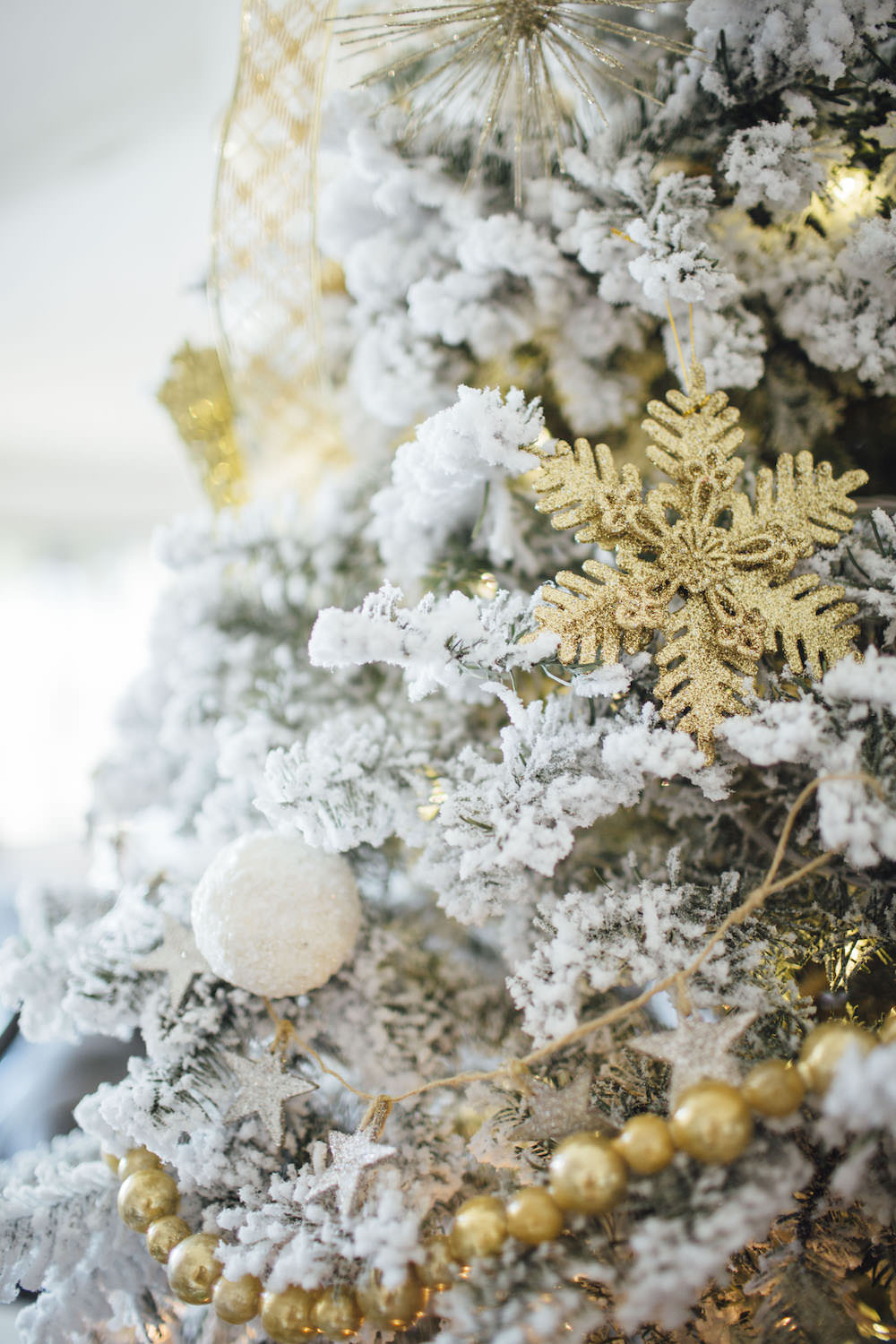 Dash of Darling | Arizona Blogger Christmas Tree Shopping